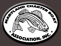 Member, Maryland Charter Boat Association, Inc.